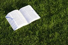 χλόη βιβλίων Στοκ φωτογραφία με δικαίωμα ελεύθερης χρήσης