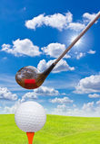 χλόη γκολφ οδηγών σφαιρών &pi Στοκ Εικόνα
