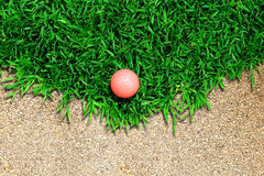 χλόη γκολφ σφαιρών Στοκ εικόνες με δικαίωμα ελεύθερης χρήσης