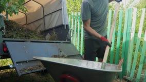 Χλόη και απορρίμματα φορτίων εργαζομένων της Farmer σε έναν τρόπο ζωής φορτηγών ρυμουλκών από wheelbarrow με τα pitchforks και τα απόθεμα βίντεο