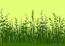 Χλόη και λουλούδια, άνευ ραφής Στοκ εικόνες με δικαίωμα ελεύθερης χρήσης