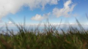 Χλόη και ουρανός Άποψη άνωθεν, με τα σύννεφα απόθεμα βίντεο