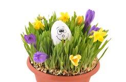 Χλόη Πάσχας και ευτυχές αυγό Στοκ Φωτογραφίες