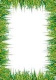 χλόη πλαισίων Διανυσματική απεικόνιση