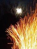Χλόη πυρκαγιάς στοκ εικόνα