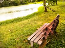 Χλόη στο πάρκο στοκ εικόνες με δικαίωμα ελεύθερης χρήσης