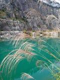Χλόη στο φυσικό πάρκο ορυχείου Œ Autumnï ¼ Στοκ φωτογραφία με δικαίωμα ελεύθερης χρήσης