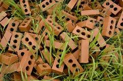 χλόη τούβλων Στοκ Φωτογραφία