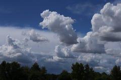 Χνουδωτά σύννεφα με τα δέντρα σκιαγραφιών στο πρώτο πλάνο στοκ φωτογραφία με δικαίωμα ελεύθερης χρήσης