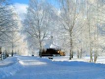 χνουδωτός χειμώνας στοκ εικόνα με δικαίωμα ελεύθερης χρήσης
