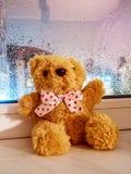 Χνουδωτός teddy αντέχει κάθεται στο windowsill με ένα υγρό γυαλί από τη βροχή στοκ εικόνες