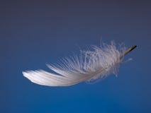 Χνουδωτό άσπρο φτερό πέρα από το μπλε φως floating στοκ εικόνες με δικαίωμα ελεύθερης χρήσης