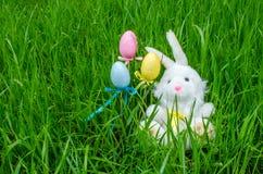 Χνουδωτό λαγουδάκι Πάσχας με τα χρωματισμένα αυγά Στοκ Εικόνες