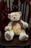 Χνουδωτό Teddy αντέχει Στοκ Εικόνα