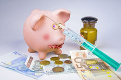 χοίροι γρίπης Στοκ εικόνα με δικαίωμα ελεύθερης χρήσης
