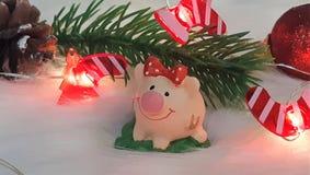 Χοίρος παιχνιδιών και χειμερινό ντεκόρ, συγχαρητήρια στις διακοπές Σύμβολο του έτους του χοίρου στο υπόβαθρο των φω'των Χριστουγέ στοκ εικόνες