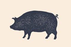 Χοίρος, χοιρινό κρέας Εκλεκτής ποιότητας λογότυπο, αναδρομική τυπωμένη ύλη, αφίσα για το κρεοπωλείο διανυσματική απεικόνιση