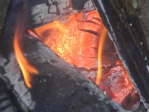 χοβόλεις καυτές Στοκ Εικόνες