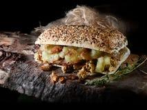 Χοιρινό κρέας και σάλτσα Panini ΙΙ της Apple Στοκ Εικόνα