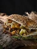 Χοιρινό κρέας και σάλτσα Panini της Apple Στοκ Φωτογραφίες