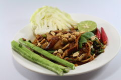 Χοιρινό κρέας σαλάτας για τα ταϊλανδικά τρόφιμα Στοκ εικόνες με δικαίωμα ελεύθερης χρήσης