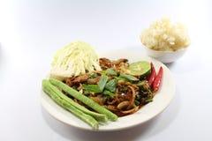 Χοιρινό κρέας σαλάτας για τα ταϊλανδικά τρόφιμα Στοκ φωτογραφία με δικαίωμα ελεύθερης χρήσης