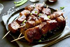 Χοιρινό κρέας σχαρών kebabs στοκ εικόνες με δικαίωμα ελεύθερης χρήσης