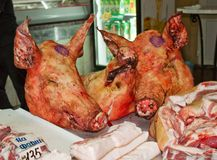 χοιρινό κρέας τρία κεφαλιώ&n Στοκ φωτογραφία με δικαίωμα ελεύθερης χρήσης