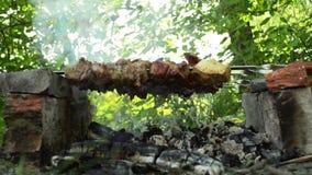 Χοιρινό κρέας Kebab απόθεμα βίντεο