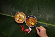 χοιρινό κρέας satay Στοκ φωτογραφία με δικαίωμα ελεύθερης χρήσης