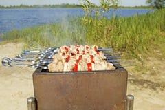 Χοιρινό κρέας shashlik Στοκ Εικόνες