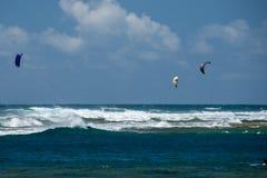 ΧΟΝΟΛΟΥΛΟΥ, ΗΠΑ - 14 ΑΥΓΟΎΣΤΟΥ, 2014 - άνθρωποι που έχουν τη διασκέδαση στην παραλία της Χαβάης με το kitesurf Στοκ Φωτογραφίες