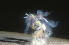 Χορευτής αμερικανών ιθαγενών στην κίνηση στη φυλετική τελετή, θλ*γαλλuπ, Νέο Μεξικό στοκ φωτογραφία