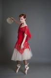 Χορευτής με ένα ντέφι Στοκ Φωτογραφίες