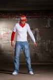 χορεύοντας γκρίζος λυ&kappa Στοκ φωτογραφίες με δικαίωμα ελεύθερης χρήσης