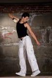 χορεύοντας γκρίζος λυ&kappa Στοκ Φωτογραφία