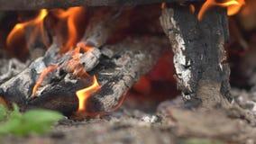 Χορεύοντας φλόγες σε μια πραγματική woodburning πυρκαγιά σε μια woodburning σόμπα απόθεμα βίντεο