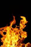χορεύοντας φλόγες Στοκ φωτογραφίες με δικαίωμα ελεύθερης χρήσης