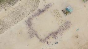 Χορογραφία ομάδας στην παραλία εναέριο strandja φωτογραφίας βουνών της Βουλγαρίας φιλμ μικρού μήκους