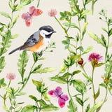 Χορτάρια λιβαδιών, λουλούδια, πεταλούδες, πουλί Επαναλαμβανόμενο βοτανικό σχέδιο watercolor απεικόνιση αποθεμάτων