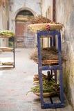 Χορτάρια και είδη σε Essaouira, Moroco Στοκ Εικόνες