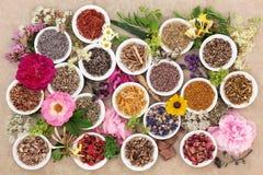Χορτάρια και λουλούδια για τη θεραπεία Στοκ Εικόνα