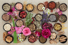 Χορτάρια και λουλούδια για τις αναταραχές δερμάτων στοκ εικόνες