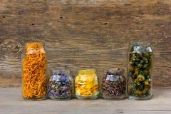 Χορτάρια και πέταλα λουλουδιών στο βάζο γυαλιού Στοκ Φωτογραφίες