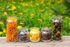 Χορτάρια και πέταλα λουλουδιών στο βάζο γυαλιού Στοκ φωτογραφία με δικαίωμα ελεύθερης χρήσης