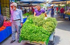 Χορτάρια και πράσινα στην αγορά Antalya Στοκ φωτογραφία με δικαίωμα ελεύθερης χρήσης