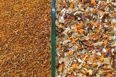 Χορτάρια τσαγιού φρούτων στοκ φωτογραφία με δικαίωμα ελεύθερης χρήσης