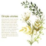 Χορτάρια Watercolor και λουλούδια, διανυσματικό υπόβαθρο Στοκ εικόνες με δικαίωμα ελεύθερης χρήσης