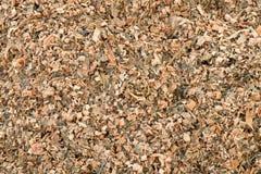 Χορτάρι αραβόσιτου καλαμποκιού που αλέθεται ως ζωοτροφές Απόβλητα από το καλαμπόκι που ξεφλουδίζει τη διαδικασία στοκ εικόνες