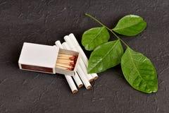 Χορτάρι για το εγκαταλειμμένο κάπνισμα Στοκ φωτογραφία με δικαίωμα ελεύθερης χρήσης